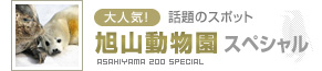 旭山動物園ツアー・フリープラン