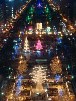 【冬の札幌に輝く/さっぽろホワイトイルミネーション】写真